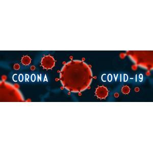 COVID-19 (NOVO CORONAVÍRUS) E AS AMEAÇAS IMPREVISÍVEIS À CONTINUIDADE DOS NEGÓCIOS