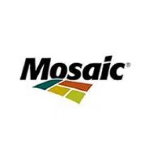 CASES MOSAIC FERTILIZANTES - RISK REGISTER