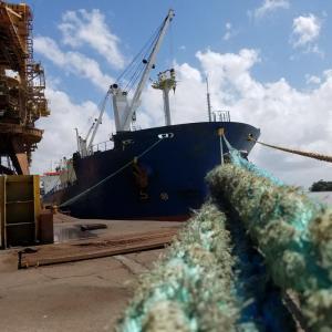 CONAMA 306-2002 - Auditorias ambientais em portos, terminais e refinarias